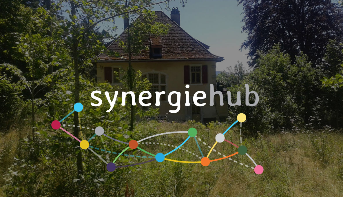 Décentrale Synergiehub